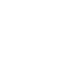 lacrosse-silhouette-of-a-person-with-a-racquet